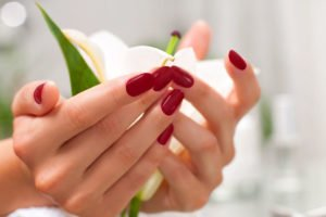 Spa Manicures Spa Pedicures Vegan Bella Reina Spa