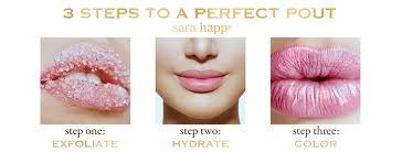 Sara Happ Lip Facial